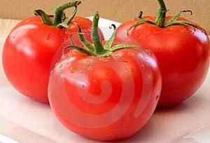 Tomatoes Fresh Royalty Free Stock Photos - Image: 4559788