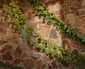 Stone Wall Royalty Free Stock Photography - Image: 4591847