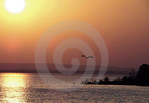Into The Sun Set Royalty Free Stock Photos