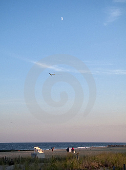 Beach Moon Royalty Free Stock Images - Image: 465269