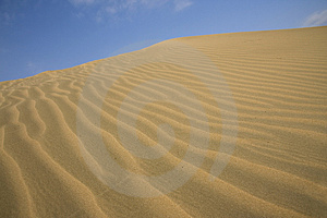 Desert Grooves Royalty Free Stock Photography - Image: 4617427