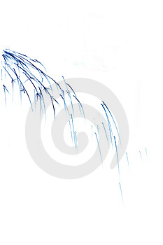 Abstract Sparks Royalty Free Stock Photo - Image: 4617645