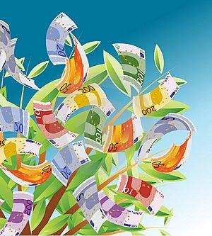 Money Tree 01 Royalty Free Stock Image - Image: 4687476