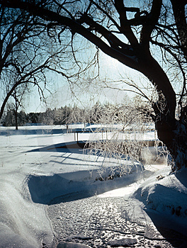 Frozen Stream Stock Photo - Image: 4691940