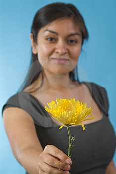 Flower? Stock Photo - Image: 4696570