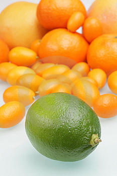 Citrus Royalty Free Stock Photo - Image: 4727845