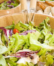 Salad vegetarian health Royalty Free Stock Image