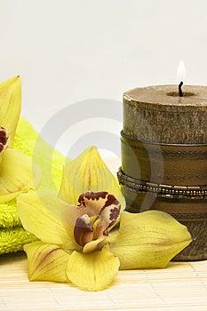 Spa Essentials Stock Image - Image: 4761361