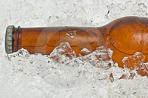 Close-up of neck, bottle of beer on ice Stock Images