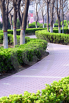Curve Avenue In Spring Stock Photos - Image: 4800253