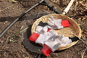 Garden Gloves Royalty Free Stock Images - Image: 4837329