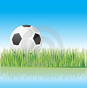 Football On Grass, Nature Stock Photo - Image: 4838130