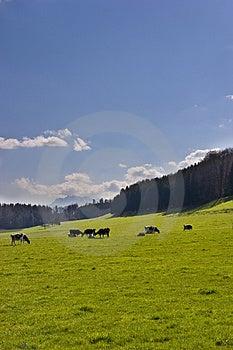 Swiss Range Royalty Free Stock Image - Image: 4872666