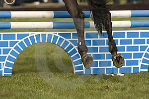 Horse Jumping 005 Royalty Free Stock Photo - Image: 4894975
