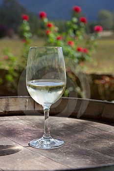 Glass of wine. Stock Photos