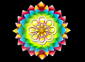Floral Flower Stock Image - Image: 4904571