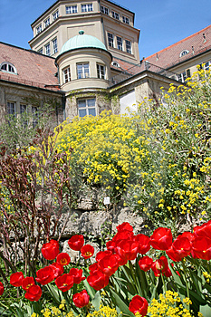 Botanischer Garten Royalty Free Stock Photos - Image: 4967028