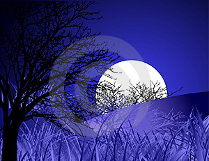 Night landscape Royalty Free Stock Photo