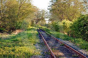 Railway In Woods Stock Photo - Image: 4967960
