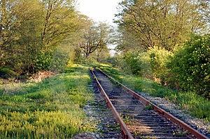 Railway In Woods Stock Photo - Image: 4967960