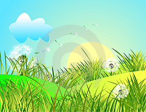 Spring landscape with green grass and blue sky