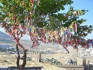 Tree Of Happiness Stock Photos - Image: 4974303
