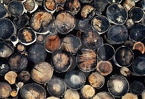 Logging Pallette Stock Images - Image: 4979184