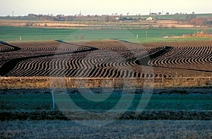 Plowed Field Free Stock Images