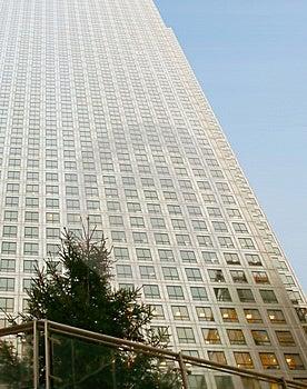 Corporate Tree 2 Stock Photos