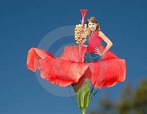 Girl In Flower Free Stock Image
