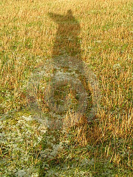 Self Shadow Stock Image