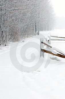 Winter Path Free Stock Photo