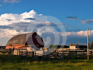 Late Day Farm Royalty Free Stock Photo