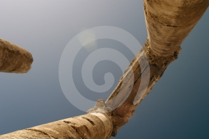 Romano-colunas Imagem de Stock - Imagem: 509631