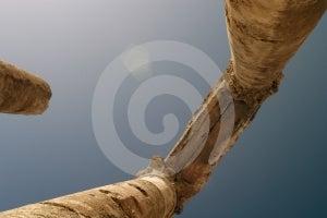 Römisch-Spalten Stockbild - Bild: 509631