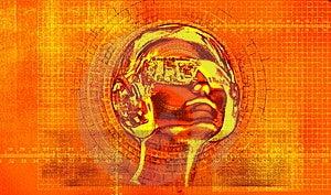 NanoCat Stock Image - Image: 5029401