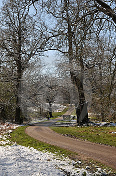 Winding Drive Royalty Free Stock Photography - Image: 5059687