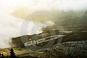 Yuanyang Ladder Field Stock Photography - Image: 5072072