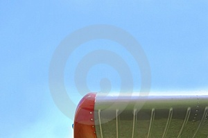 Wing Royalty Free Stock Photography - Image: 5085477