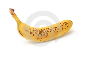 Isolated banana Royalty Free Stock Photo