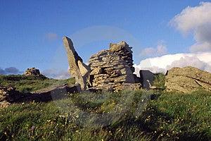Stone Turtle Stock Photos - Image: 5100483