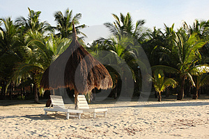 A Place In The Shade Royalty Free Stock Photos - Image: 5133918