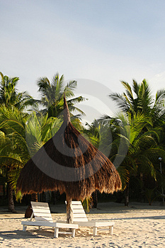 A Place In The Shade Royalty Free Stock Photography - Image: 5133937