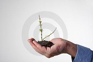 Milieubescherming Royalty-vrije Stock Foto's