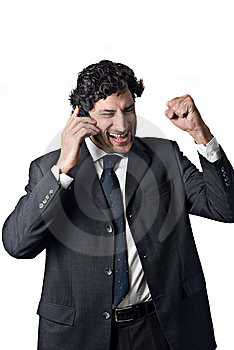 Successful Businessman Royalty Free Stock Image - Image: 5180766