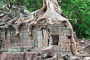 Cambodia Angkor Preah Khan Stock Images - Image: 5187734