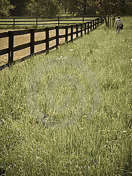 Man Walking Through A Field Stock Images - Image: 5194704