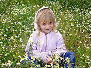 Little Girl And Camomiles. Stock Photography - Image: 5204252