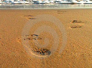 Footsteps on beach Free Stock Images
