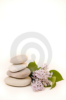 Stacked stones with flower Stock Photos